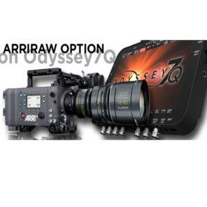 Arriraw Option for Odyssey 7Q Rental