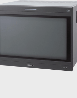 Sony BVM-D24