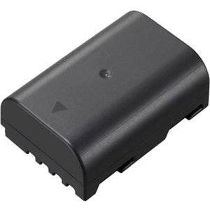 Panasonic DMW-BLF19 Lithium-ion Battery Rental manhattan Brooklyn Nyc
